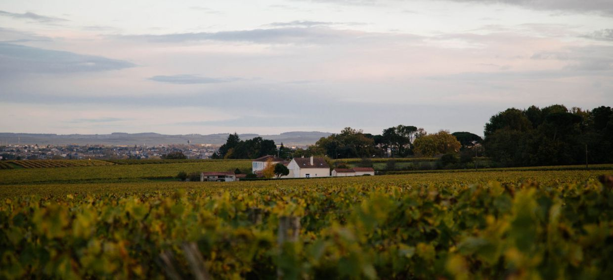 IS THERE SUCH A THING AS A ROUTE DU COGNAC?