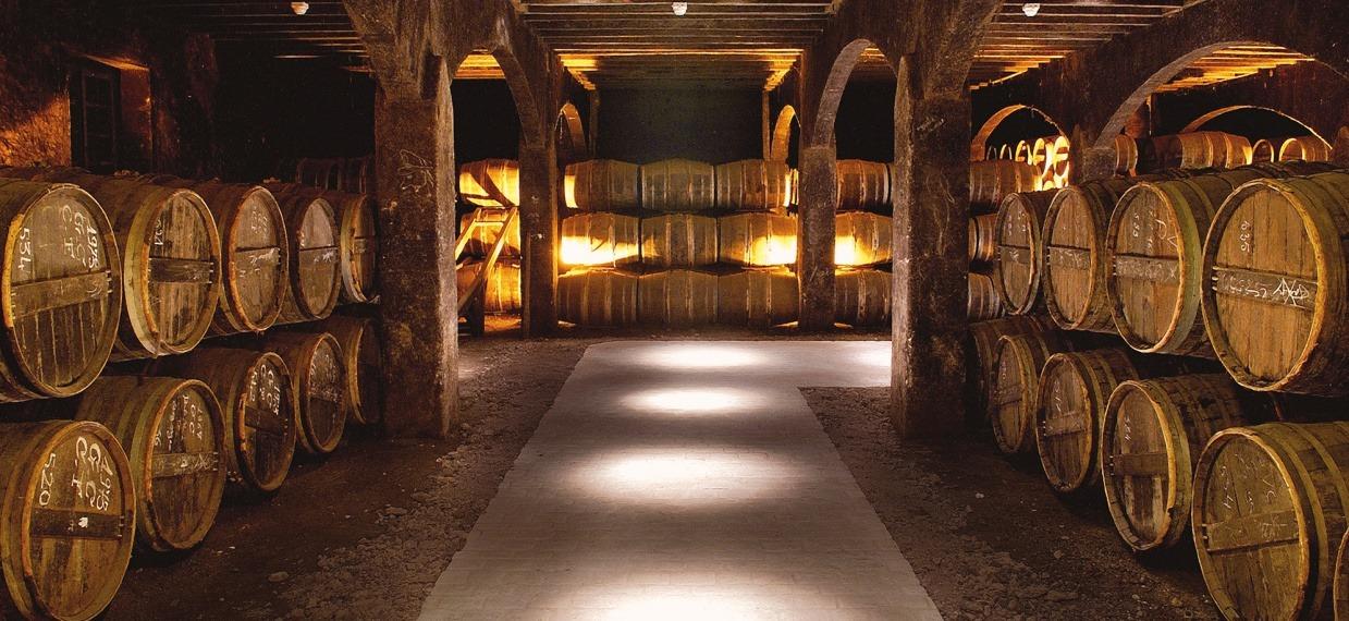 Martell Cognac caves